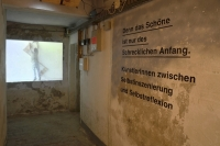 http://danielahoferer.com/files/gimgs/th-29_41_denn-das-schane-ist-nur-des-schrecklichen-anfangfoto-julia-gaisbacher-10_v3.jpg